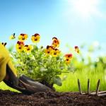 5 keinoa saada kesätyö – kirjoittamatta hakemusta!